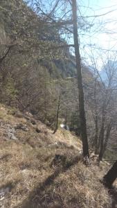 Sentiero CAI 481